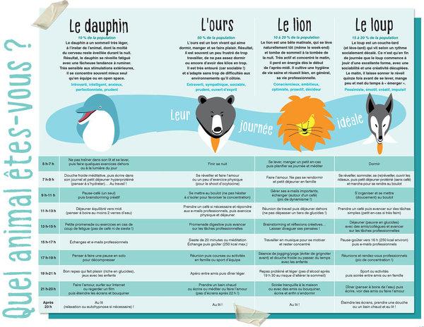 Test : quel animal êtes-vous ? - Magazine Sens & santé