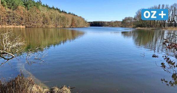 Top-Ausflugsziel in Nordwestmecklenburg: der Stausee bei AltFarpen