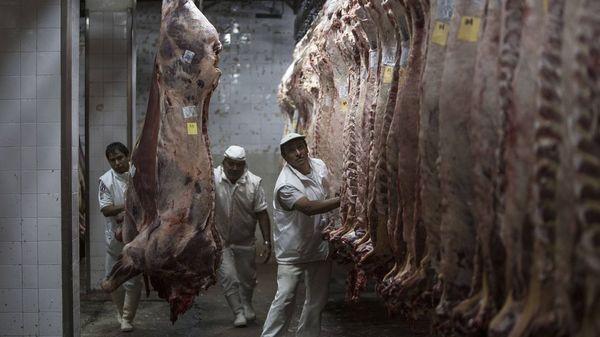 """10,80 Euro: Neuer Mindestlohn in der Fleischbranche – Beschäftigte bekommen """"deutlich mehr Geld für Knochenjob"""""""
