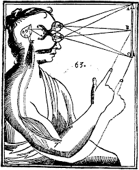 Illustration du rapport corps-esprit par Descartes. Les entrées sensorielles sont transmises par les organes sensoriels à la glande pinéale dans le cerveau, puis à l'esprit immatériel (Source Wikipedia)