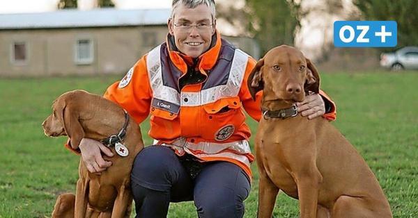 Einsatz für Holly und Kito: Diese Greifswalder Hunde sind wahre Lebensretter