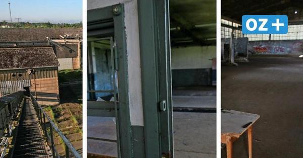 Lost Places: So sieht es in den alten Getreidehallen in Grevesmühlen heute aus