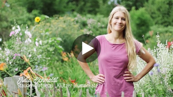 Imagefilm Staudengärtnerei Klütz im Klützer Winkel (YouTube)