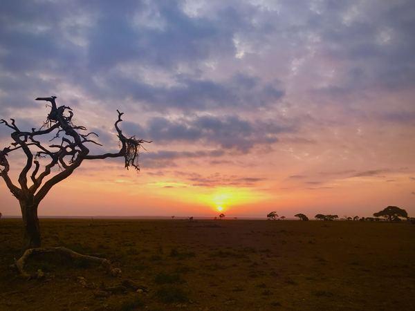 sunrise at Amboseli National Park in Kenya