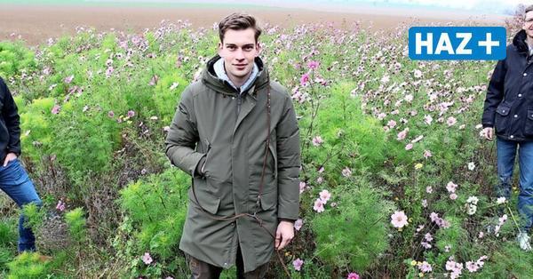 Blühende Felder: Start-up aus Hannover will auf 50.000 Quadratmetern Blumen sähen