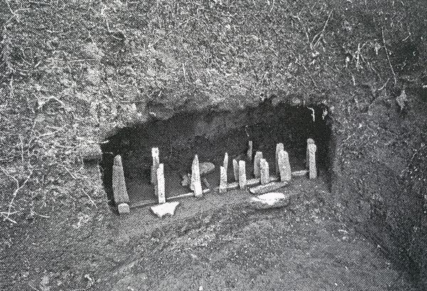 Marae miniature photographié par William Mulloy en 1956 (Rapa, une île du Pacifique dans l'histoire de Christian Ghasarian)