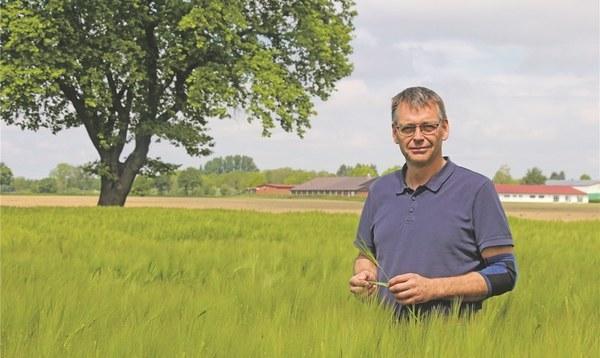 Gute Aussichten auf bessere Getreideernte - Land- und Forstwirtschaft - Walsroder Zeitung