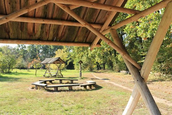 Die Streuobstwiese im Tiergarten von Königs Wusterhausen. Foto: Nadine Pensold