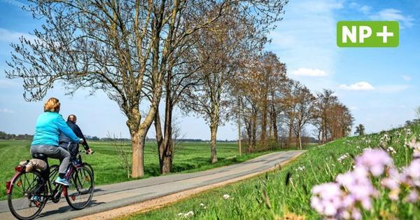 Stadtradeln 2021: Kilometer sammeln für die Region Hannover