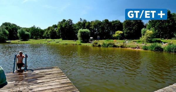 Badeseen, Talsperren und Teiche: Hier kann rund um Göttingen naturnah gebadet werden