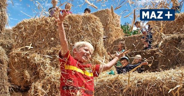 Brandenburger Landpartie 2021: Die Bauernhöfe öffnen - mit diesen Corona-Regeln