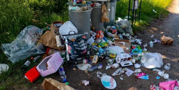 Müllberge im Babelsberger Park: Auch drei Mülleimer sind nicht genug. Quelle: Jeanette Gruschke
