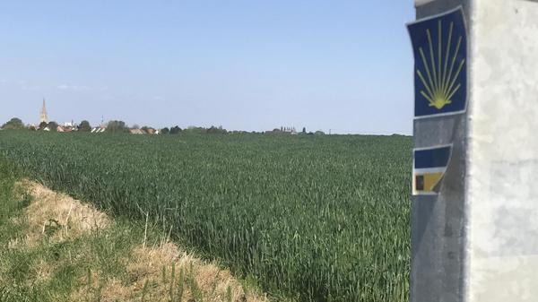 Quand le chemin de Compostelle commence au pied du moulin d'Hondschoote - Weg naar Santiago de Compostela start aan de voet van de molen in Hondschoote
