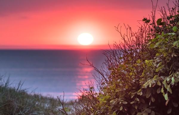 Sonnenuntergang auf dem Darß (Foto: Klaus Haase)