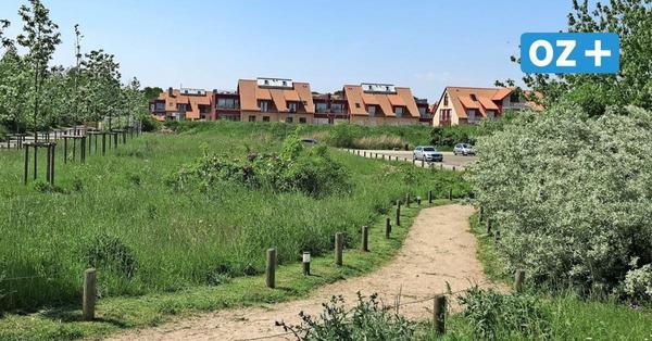Ferienhäuser mit Dünen und Buhnen: Video zeigt neues Urlaubsresort in Hohen Wieschendorf
