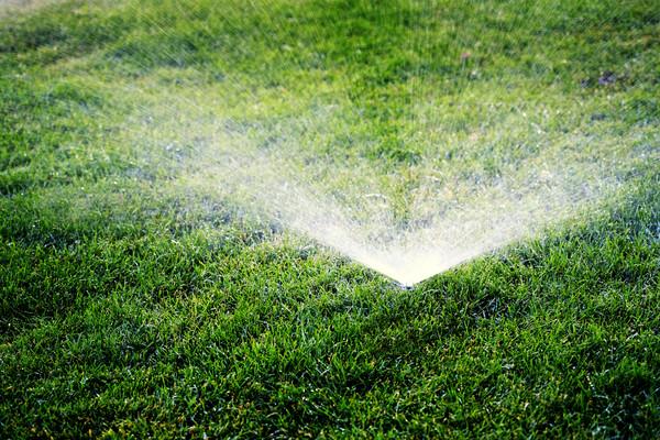 Ist das Bewässerungssystem einmal installiert, hält es sich strikt an den voreingestellten Gießplan. Foto: Imago/agefotostock