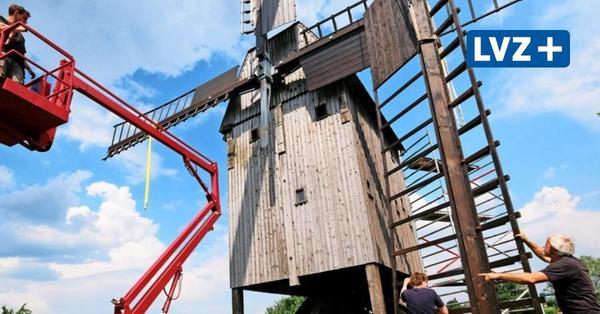 Ein Holländer verleiht den Mühlen  in Nordsachsen Flügel