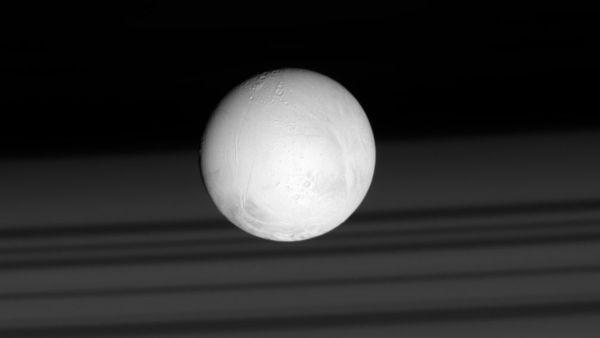Gibt es auf dem Saturnmond Enceladus Leben?
