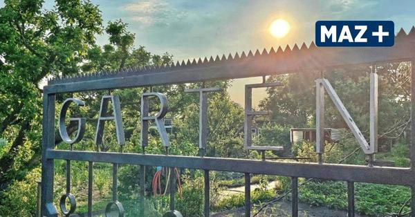 Ansturm auf Kleingärten im Westhavelland – Hier gibt es noch freie Parzellen