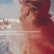Sendfinite Digital Marketing Agency