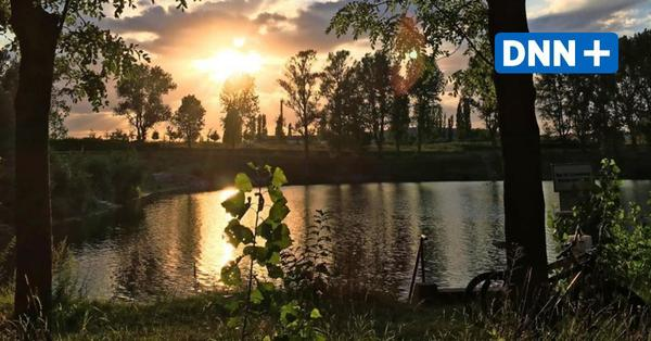 Abkühlung: Wo man in Dresden und der Umgebung kostenlos baden gehen kann