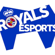 Reading FC joins forces with Rival to launch Royals Esports platform - Esports Insider