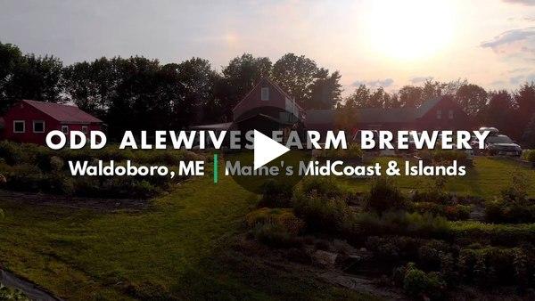 MidCoast Maine Series: Odd Alewives Farm Brewery