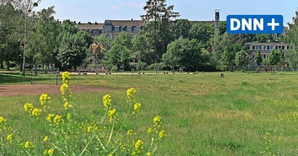 Dresdner fordern Sportplatz und Hundeauslaufgebiet im Alaunpark in der Neustadt