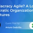 Is Holacracy Agile? Explaining Holacratic Organizational Structures