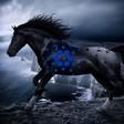 Cardano: DeFi's Dark Horse or Dead Duck?