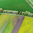 Research efforts to reduce pesticide contamination