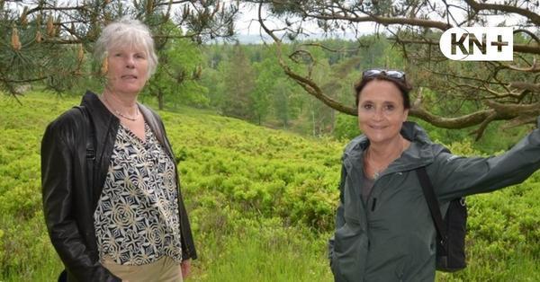 Entschleunigungstouren in Aukrug, Nortorf: Entspannen im grünen Wald