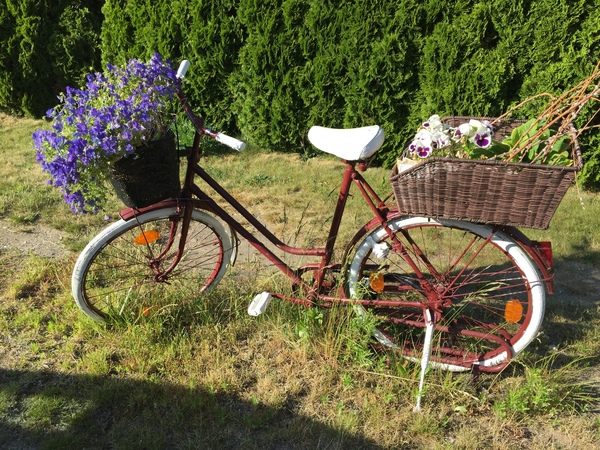 Das Rad steht in der Schillerstraße Bad Doberan (Foto: Anja Levien)