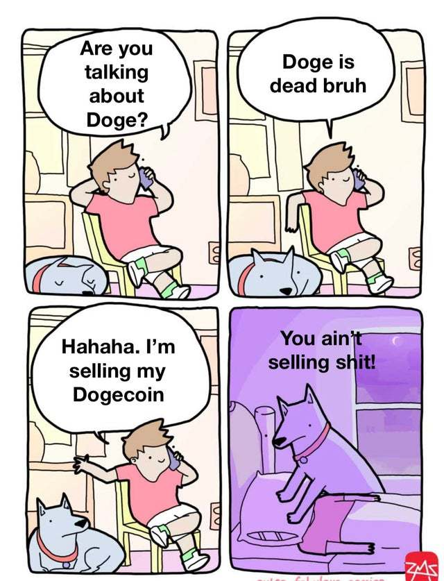 8 Reasons Why Dogecoin Will Rise Again   Revue