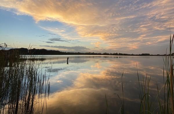 Der Netzener See zeigt sich von seiner schönsten Seite. Foto: Ellen Klausch