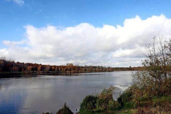 Idylle pur: Der Waldsee Lauer liegt versteckt zwischen Leipzig, Markkleeberg und Cospudener See. Quelle: Kempner