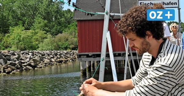 Lecker Algen aus Boltenhagen: So funktioniert die erste Meersalat-Farm an deutscher Ostsee