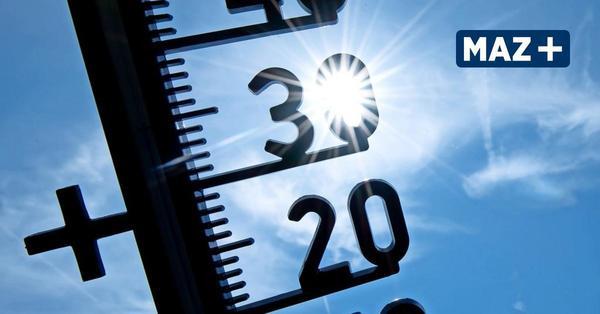 So wird das Wochenend-Wetter in Teltow-Fläming und Dahme-Spreewald