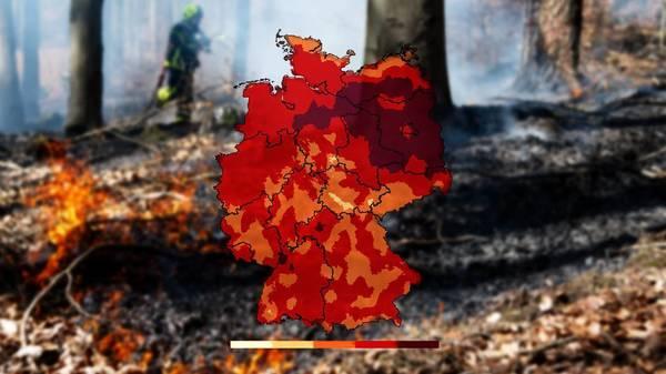 Höchste Waldbrandgefahr in Teilen Deutschlands - vor allem im Osten