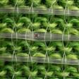 MIT presenta una tela inteligente