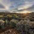 Nevada coalition seeks national monument over wind farm
