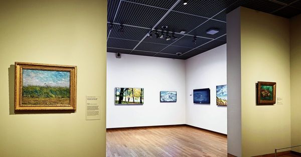 Blokkerige webfoto's naast 'bezielde' landschappen van Van Gogh - NRC