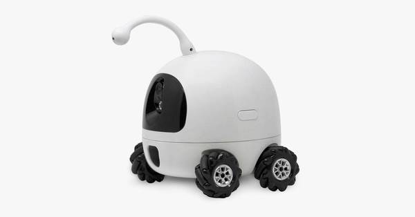 Rocki Robot Review: A Remote Tentacle-Headed Cat Bot