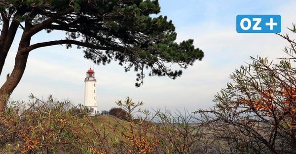 Streit um Hiddensee-Grundstücke: Warum Stralsund den Verkauf ablehnt