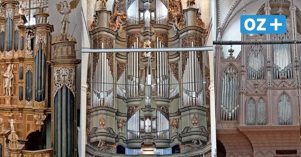 Stralsunder Orgel-Sommer: Jeden Mittwoch ein Konzert