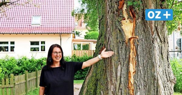 Video zeigt Blitzeinschlag bei Kita in Stralsund: Spielplatz gesperrt
