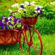 "Peaceful Music, Relaxing Music, Instrumental Music ""Garden Tea"" by Tim Janis"