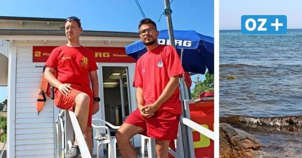Tödlicher Badeunfall in Göhren auf Rügen – Mann wollte zum Findling Buskam schwimmen