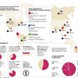 Bancos digitales y apps de servicios financieros tienen 27% del mercado en la región