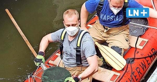 Feuerwehr Reinfeld: Rettungsaktion für fünf süße Entenküken
